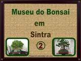 Museu do Bonsai 2